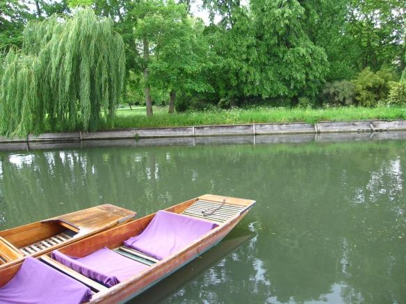 Pink punting boat!